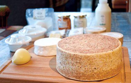 モッツァレラに白カビ、セミハードタイプも♪メイドイン鹿屋のコトブキチーズ