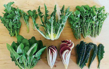農業未経験の夫婦が挑む、有機栽培のイタリア野菜