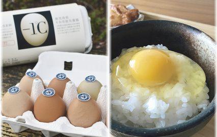 古い記事: めちゃウマ!氷温熟成卵の口に広がるうま味がスゴイ | 曽於市