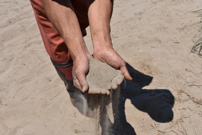 吹上浜の砂