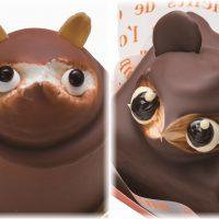 なぜか無性に「たぬき」を食べたい!鹿児島で捕獲した「たぬきケーキ」