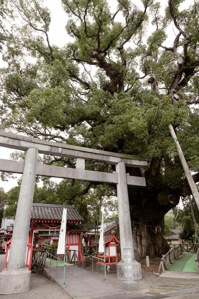 安楽山宮神社