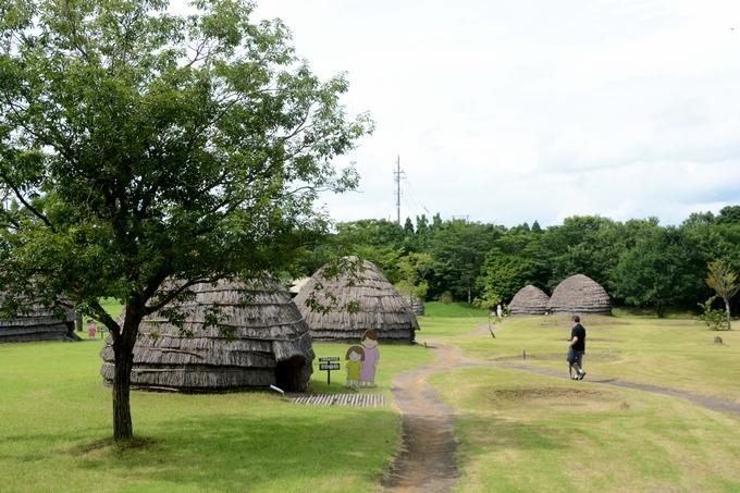 上野原縄文の森
