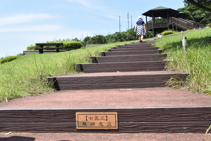 大野岳 茶寿階段