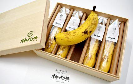 古い記事: 神バナナ、食べたことある?スゴいバナナが鹿児島にあったのだぁ
