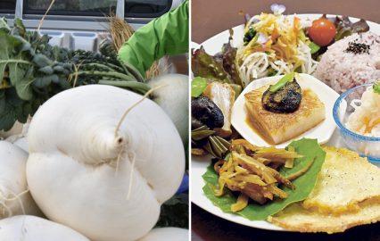 鹿児島の伝統野菜・桜島大根と、桜島大根を使ったランチ