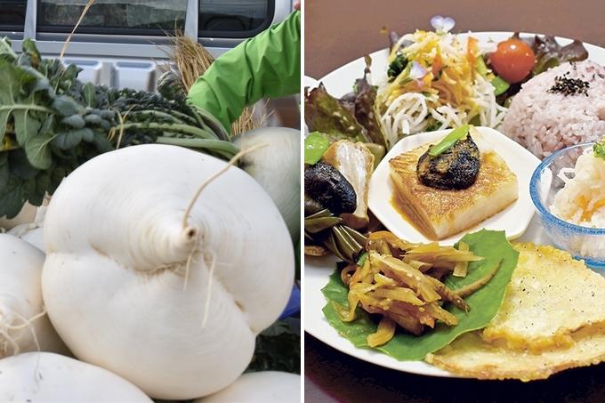 桜島 大根 レシピ