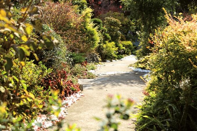 農園ガーデン空「散歩道」