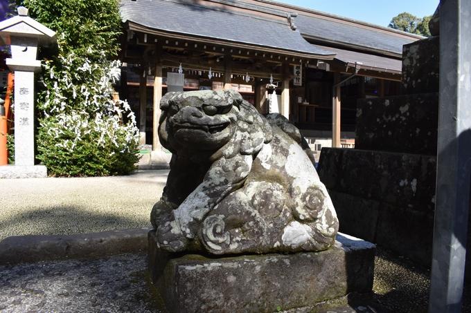 新田神社「子だき狛犬」