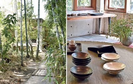 古い記事: 壺中楽(こちゅうらく)|緑の奥にひっそり佇む