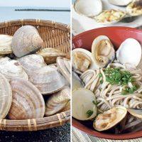 南大隅のハマグリ、食べたことある?錦江湾でおいしく変身してるのだ!