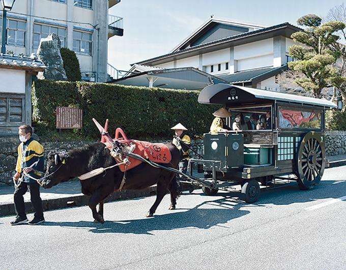 武家屋敷群内を巡る牛車体験
