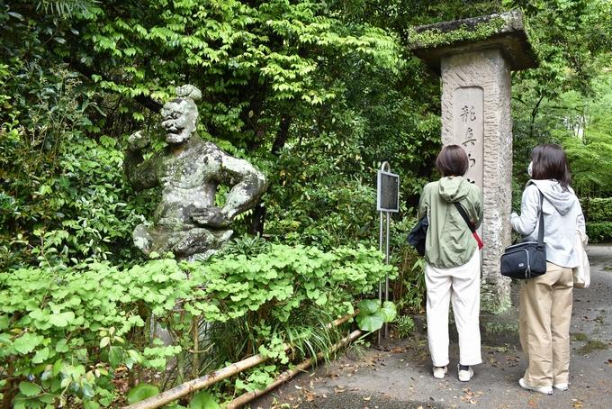 大慈寺「門前に立つ金剛力士(阿形)像」