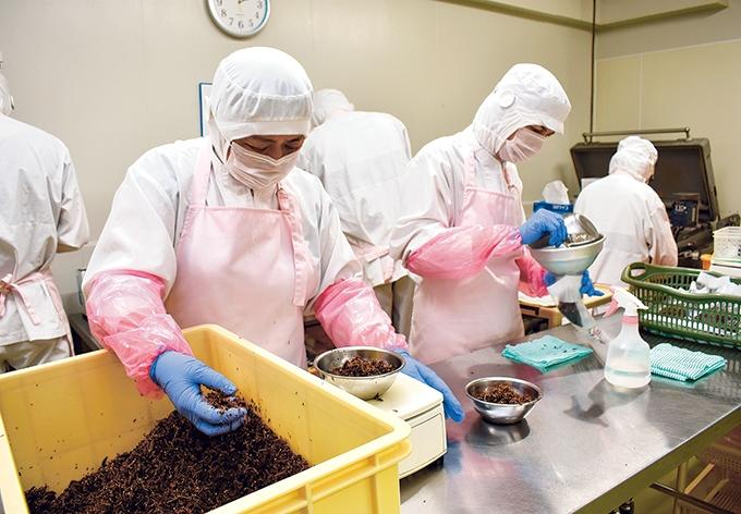 丸俊枕崎工場「かつお佃煮鰹っ子」のパック詰め作業