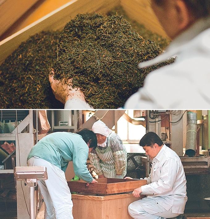 笹野製茶「発酵をさせた紅茶を確認」