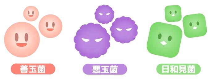 善玉菌・悪玉菌・日和見菌イメージ