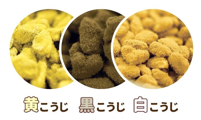三つのこうじ菌イメージ